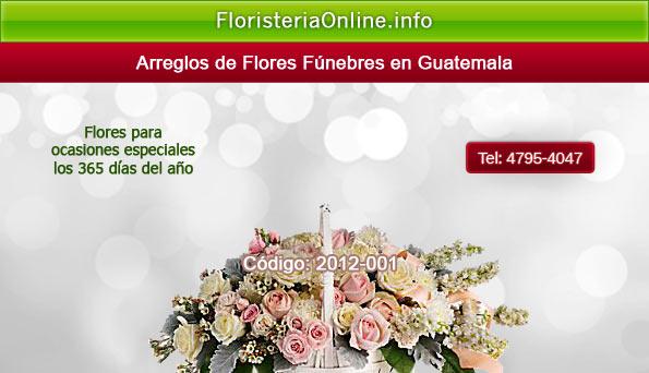 Flores En San Cristobal